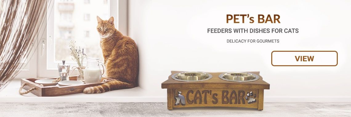 Feeders with dishes for cats