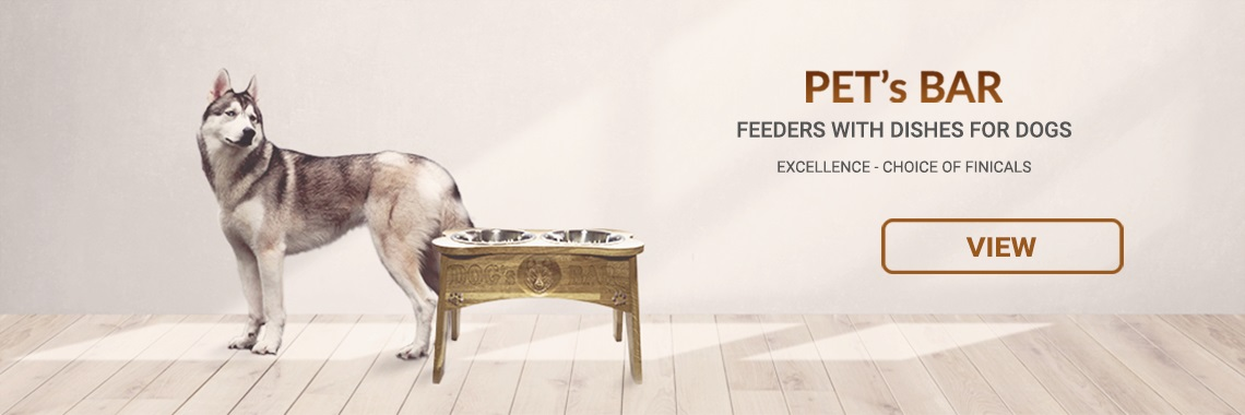 Feeders with dishes for dogs